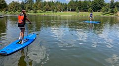 New Elliptical Stand-Up Paddleboards now available at Riva Row Boat House
